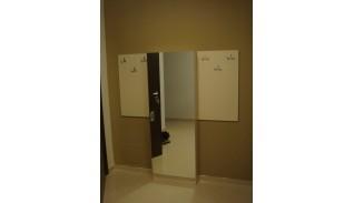 Шкаф за обувки с огледална врата Фран
